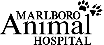 Marlboro Animal Hospital